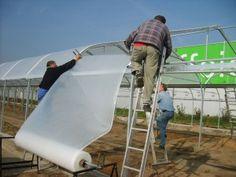 Màng Israel - Lưới chắn côn trùngCông dụng Màng nilong nhà kính